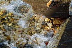 Водопад на фонтане источника малом в середине малого искусственного озера Стоковая Фотография
