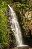 Водопад около леса Todtnau черного в Германии Стоковые Изображения