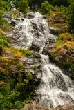 Водопад около Todtnau, в черном лесе в Германии Стоковые Изображения