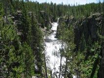Водопад окруженный зелеными деревьями Стоковое Фото