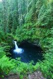 Водопад Орегона Стоковое Изображение