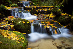 Водопад осени, Чехословакск-Saxon Швейцария Стоковая Фотография