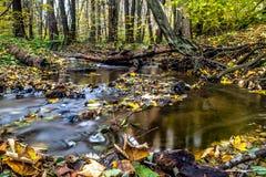 Водопад долгой выдержки blured вода на малом потоке на падении Стоковые Изображения