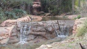водопад природы Стоковая Фотография RF
