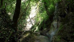 водопад пущи малый акции видеоматериалы