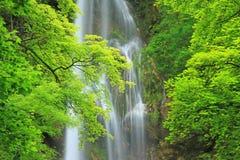 Водопад плохого Urach, Германии стоковые изображения rf