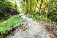 Водопад рая липкий в Таиланде Стоковое Изображение