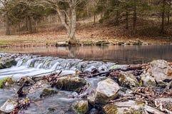 Водопад реки реветь стоковое фото