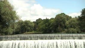 Водопад Североамериканское река Ландшафт сток-видео