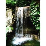 Водопад Сингапур ботанических садов Стоковое Изображение RF