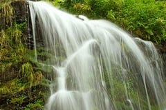 Водопад сказки в черном лесе Германии Feldberg Стоковое Изображение