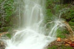 Водопад сказки в черном лесе Германии Feldberg Стоковое фото RF