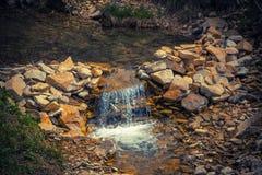 Водопад созданный к искусственно с травами близко Стоковое Изображение RF