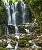 Водопад спрятанный дождевым лесом стоковая фотография rf