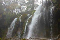 водопад среди много деревьев Стоковое Изображение