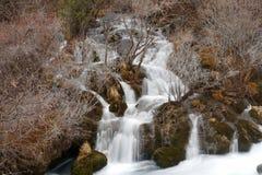 Водопад с деревьями в зиме стоковые изображения rf