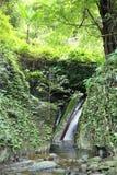 Водопад с лесом на горе в водопаде Krok-E-Dok Стоковые Изображения RF