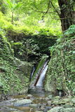 Водопад с лесом на горе в водопаде Krok-E-Dok Стоковое Изображение