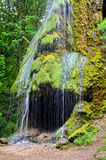 Водопад с пещерой среди зеленого сада Стоковые Изображения RF