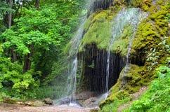 Водопад с пещерой среди зеленого сада Стоковое Изображение