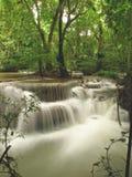 Водопад тропического леса Стоковая Фотография