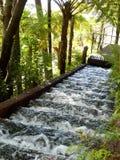 Водопад шага Стоковое Фото