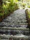 Водопад шага Стоковая Фотография RF