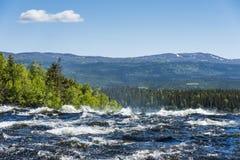 Водопад Швеция Tannforsen речных порогов Стоковые Фотографии RF