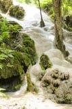 Водопады в лесе весной Стоковая Фотография RF