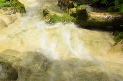 Водопады в лесе весной Стоковые Фотографии RF