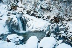 Водопады в прикарпатских горах в зиме Стоковая Фотография RF