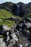 Водопады жабры языка стоковое изображение