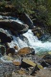 Водопады заводи путать в национальном парке яшмы, Альберте, Канаде Стоковые Изображения RF
