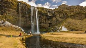 Водопады Исландии сток-видео