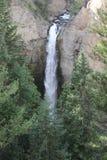 Водопады Йеллоустона Стоковое Изображение RF