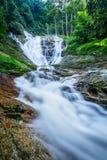 Водопады на гористых местностях Камерона, Малайзии Стоковые Фото