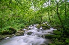 Водопады Стоковое Изображение