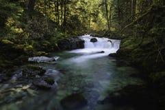 Водопады Cedar Creek Стоковые Фото
