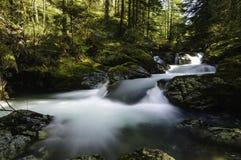 Водопады Cedar Creek Стоковые Изображения RF
