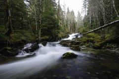 Водопады Cedar Creek Стоковые Изображения