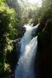 Водопады Iguazu, Misiones, Аргентина Стоковое Изображение RF