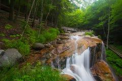 Водопады NH зазубрины Franconia