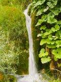 водопады plitvice национального парка озер Хорватии sostavtsy Хорватия Стоковые Изображения