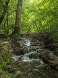 водопады plitvice национального парка озер Хорватии sostavtsy Хорватия стоковое фото rf
