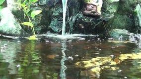Водопад видеоматериал