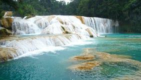 Agua Azul waterfal Стоковые Фото
