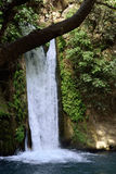 Водопад Banias, Израиль Стоковое фото RF