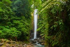 Водопад Casaroro, Филиппины Валенсия, остров Negros Стоковая Фотография