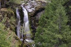 Водопад Cedar Creek в опаловом районе дикой природы заводи Стоковое Изображение RF