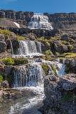 Водопад Dynjandi Стоковые Фотографии RF